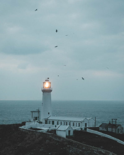 A lighthouse shines over a dark, moody sea and sky. Seagulls, frozen by the photo, swirl around the lighthouse.