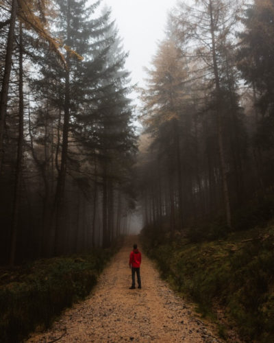 A lone figure in a bright jacket stands in the middle of a path which leads off into a moody, foggy forest.
